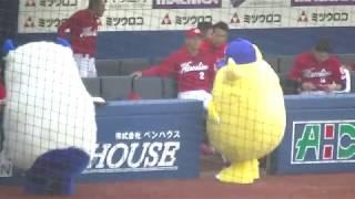 横浜DeNAベイスターズ(YOKOHAMA DeNA BAYSTARS)/ベンチを荒らして丸...