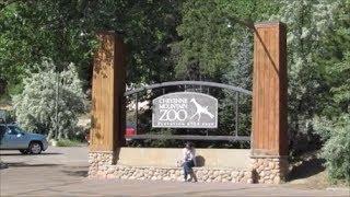The Colorado Series:  The Cheyenne Mountain Zoo