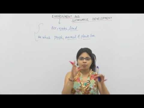 CBSE Class XI Economics - Environment & Sustainable Development #1