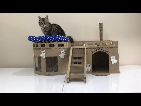 Evde Kartondan Kedi Evi Yapımı Kolay