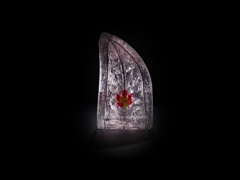 Canadian Folk Music Awards - Live Stream / Prix de musique folk canadienne