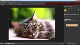 Maivavi Photo Editor 1.5