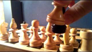 Видео урок как играть в ШАХМАТЫ