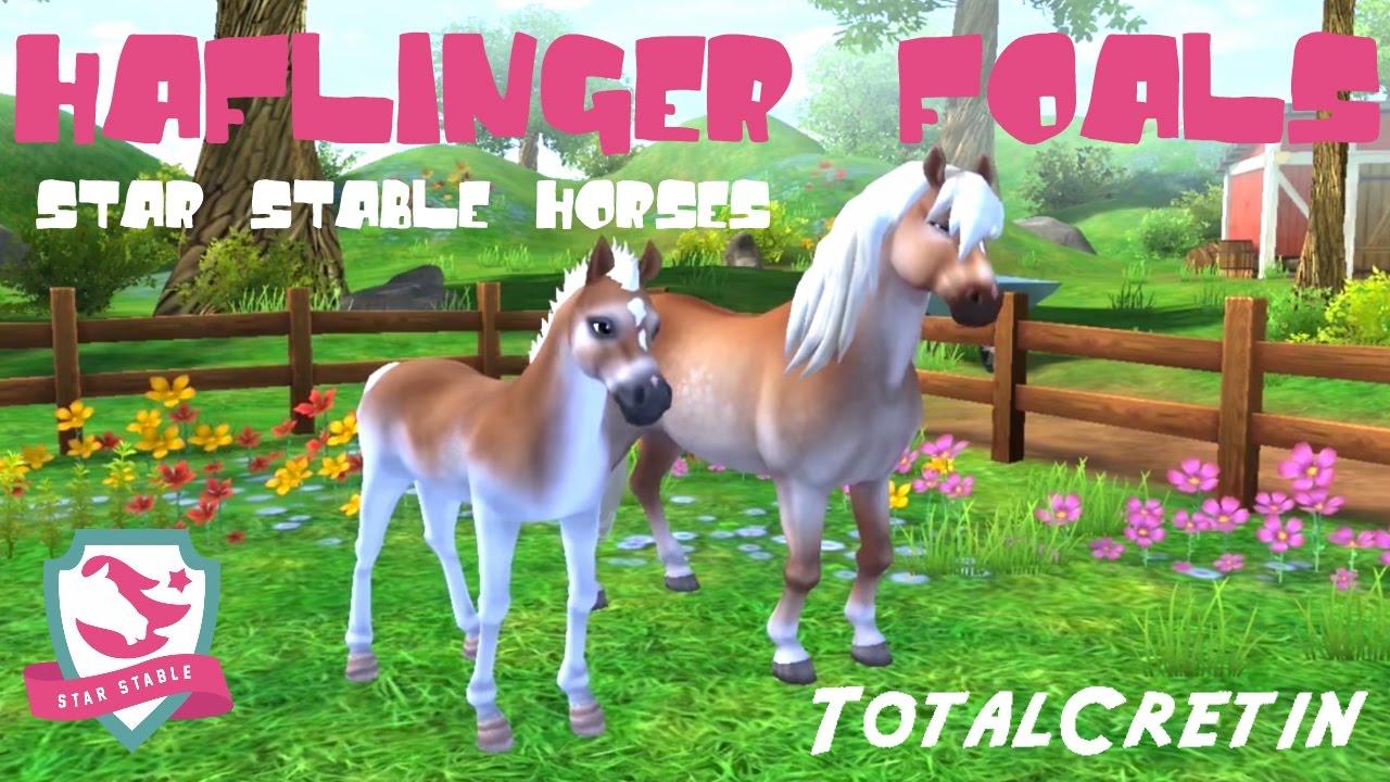 Berühmt HAFLINGER FOALS IN STAR STABLE HORSES! (Star Stable) - YouTube @LF_85