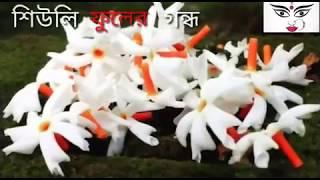 Subho Mahalaya WhatsApp Status  Mahalaya status Video   শুভ মহালয়া