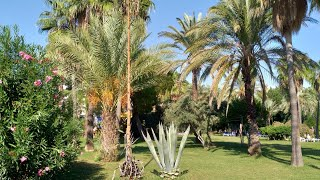 Турция Территория отеля Sural Otel 5 1 2 Ночная прогулка по аллее возле моря
