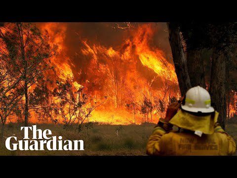 Braving the blazes: dramatic footage of bushfires ravaging Australia's east coast