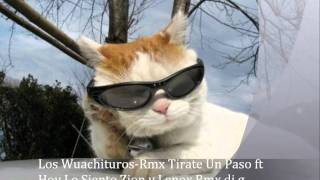 Los Wuachituros-Rmx Tirate Un Paso ft Hoy Lo Siento.Zion y Lenox.Rmx dj g once.