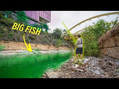Hidden Fishing In Downtown Austin Texas -- MUTANT BASS?? (Pt. 1)
