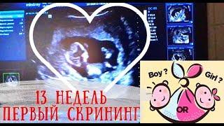 мальчик или девочка?ПЕРВЫЙ СКРИНИНГ  13 НЕДЕЛЬ БЕРЕМЕННОСТИ/Boy or girl?