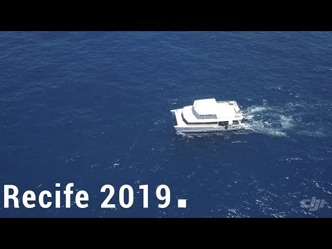 Mergulho em Recife ( Pernambuco ) - 2019 - com Tiago santa Ritta