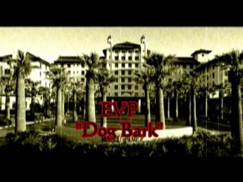 Galvez Hotel Galveston texas Evp