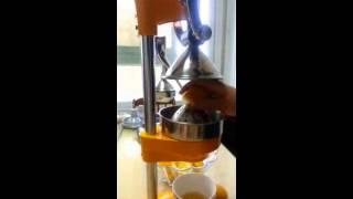 디오렌지 AM-1700 레몬 착즙기, 레몬즙짜는기계, …