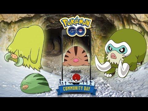 COMMUNITY DAY SWINUB y MAMOSWINE SHINY, PIEDRAS SINNOH GRATIS y 3xPolvo estelar Pokémon GO [Keibron]