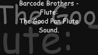 Barcode Brothers Flute
