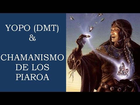 Documental •Yopo (DMT) y Chamanismo de los Piaroa• «National Geographic» Español/Castellano