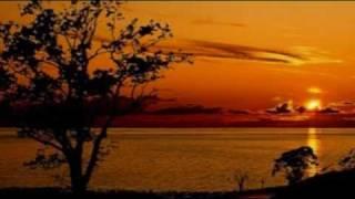 CELINE DION - I  KNEW  I LOVED YOU 1999