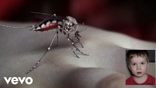 Watch Yeah Yeah Yeahs Mosquito video