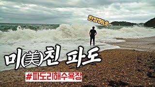 서해차박캠핑 / 파도리해수욕장 / 태안차박추천 / 이 …