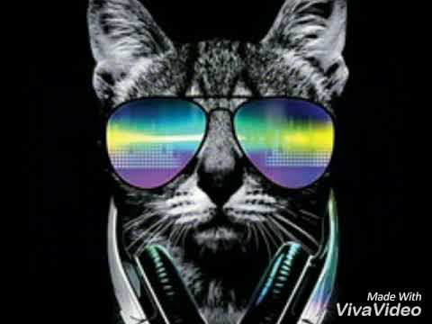 Willy William - Voodoo Song (Elio Remix) Remix Song