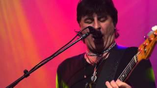 The Chameleons Vox - Perfume Garden (Live on KEXP)