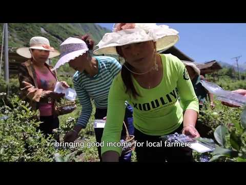Huanglong Biosphere Reserve implements Sustainable Development Goals (China)