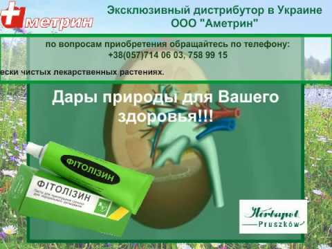 Фитолизин (мочекаменная болезнь, пиелонефрит, цистит)