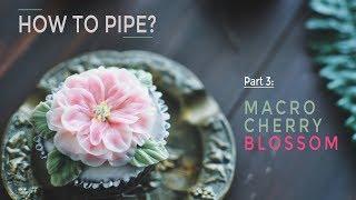 Macro cherry blossom buttercream tutorial (Korean buttercream) - Cách bắt hoa anh đào macro (cỡ đại)