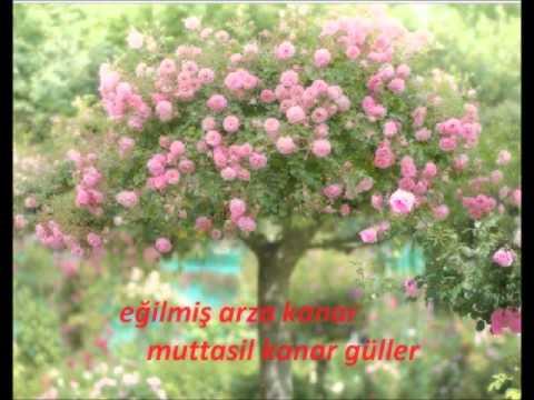 MERDİVEN  şiir AHMET HAŞİM  beste  HASAN GÜNDÜZ ARIKAN