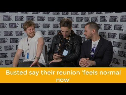 Busted say their reunion 'feels normal now'   NEWS   KENH CUA BE