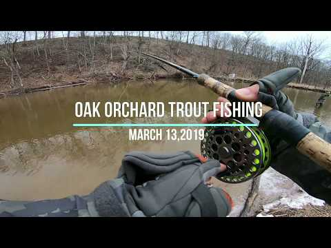 March 13, 2019 Oak Orchard Trout Fishing
