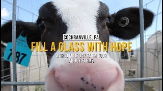 World Milk Day - Fill A Glass With Hope