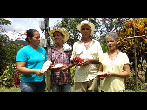 How tourism makes a difference helping Colombian farmers