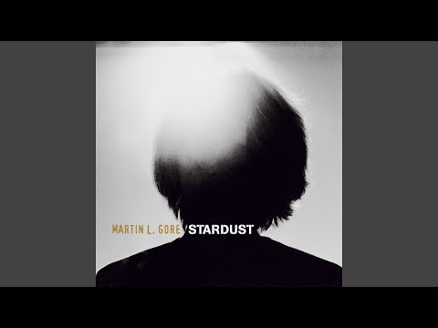 Stardust (Atom Vocal Remix)