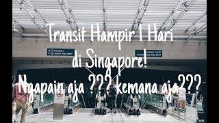 Video Transit Hampir Seharian di Singapore (1 day transit at Singapore) download MP3, 3GP, MP4, WEBM, AVI, FLV September 2018