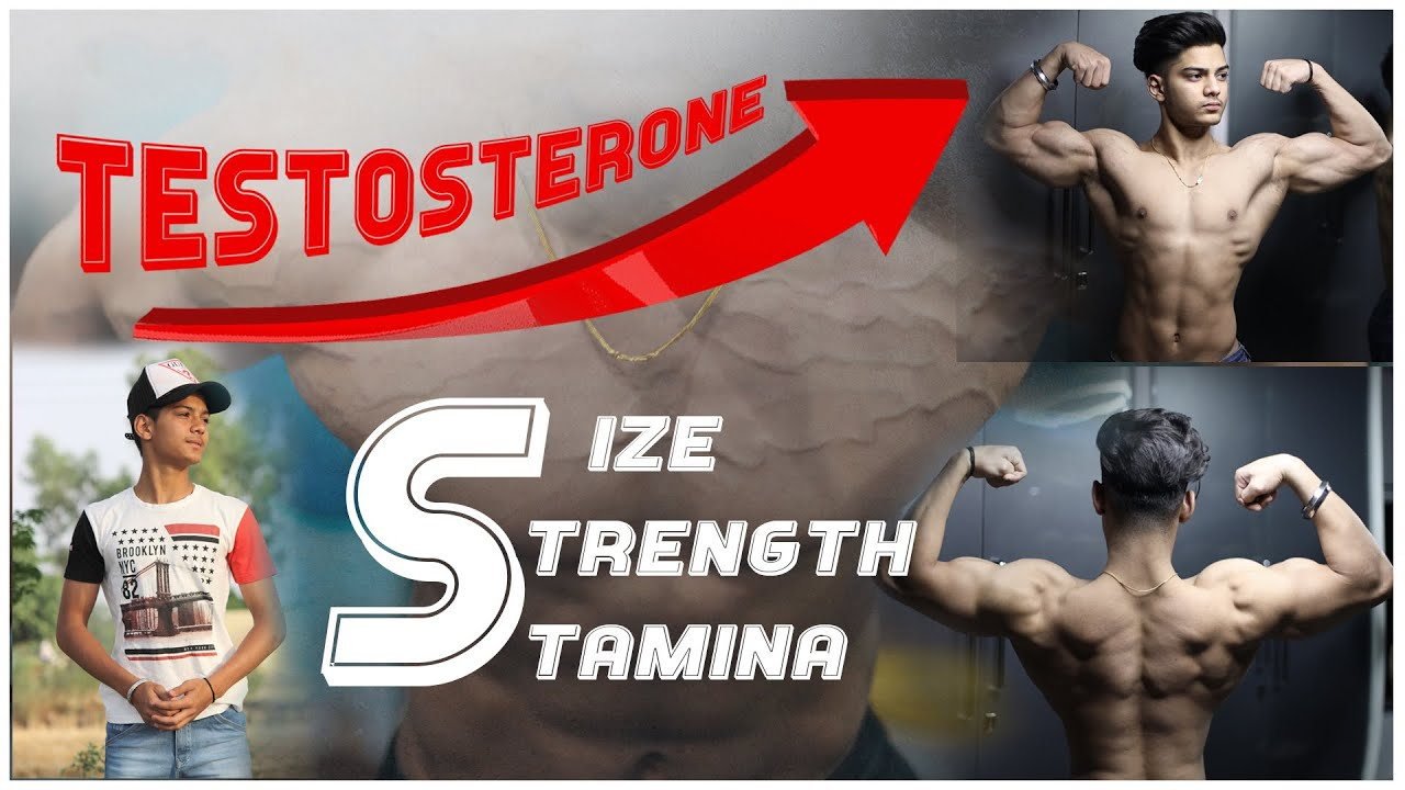 Download How To Boost Testosterone Naturally | Back and Bicep Workout | Sehaj Zaildar