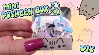 Mini Pusheen SUMMER Subscription Box Tutorial // DIY Doll/Dollhouse Miniature thumbnail