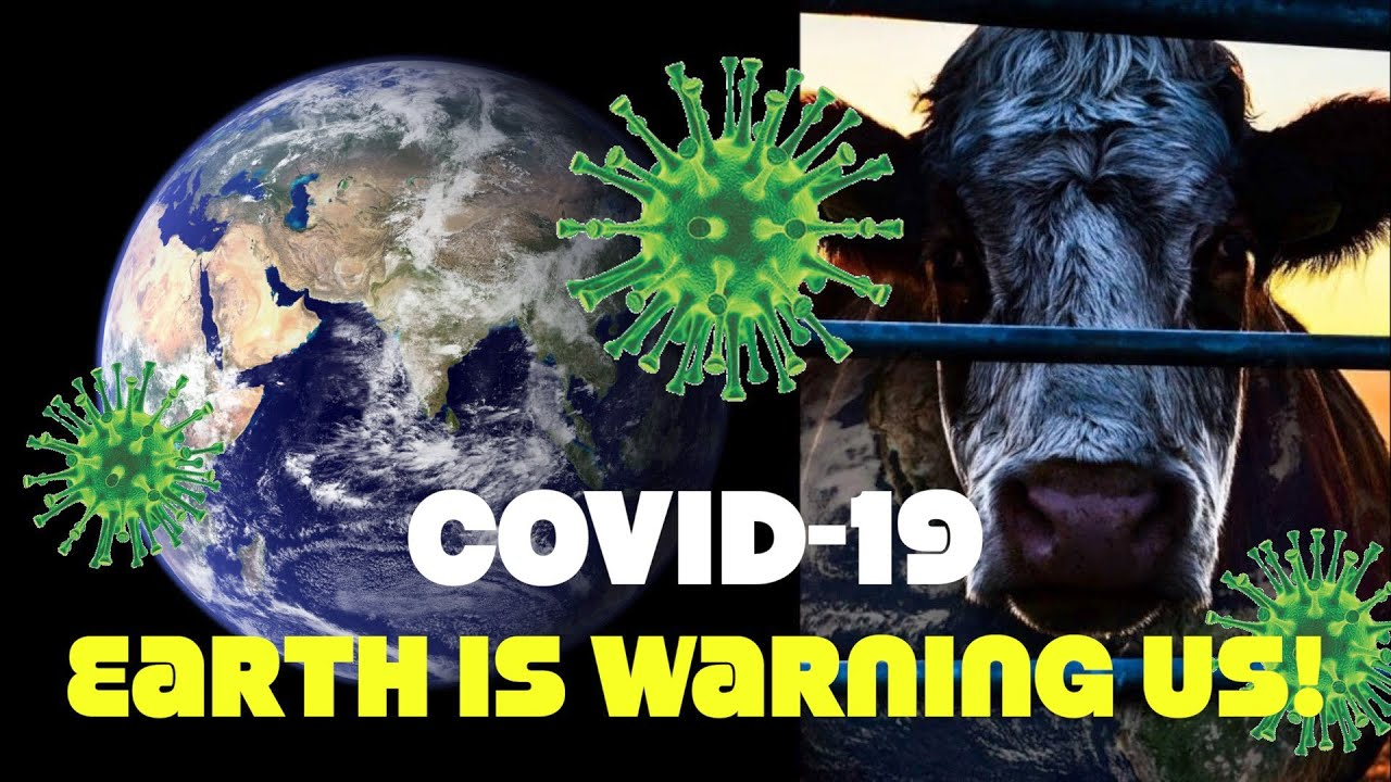 Covid-19 Is Nature Sending A Warning About Eating Meat: United Nations Chief