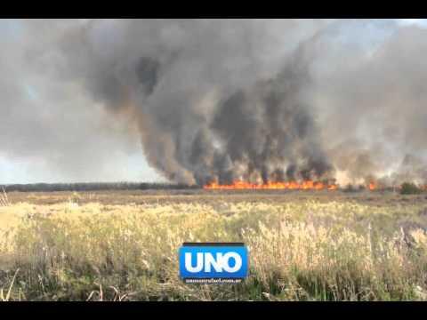 Incendio en Alto del Algarrobal