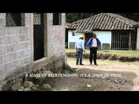 Specialty Coffee in Honduras: a trailer