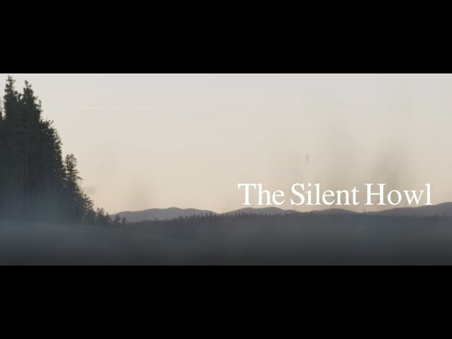 The Silent Howl