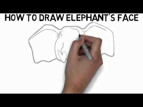 How to draw elephants face quickly and easily