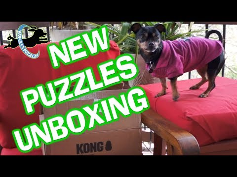 Ripley Unboxes A New Shipment Of Puzzle Toys