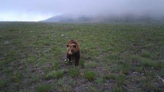 Наша Сибирь 4К: Байкало-Ленский заповедник