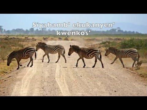 Siyahamba - Zulu Song