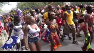eastern parkway brooklyn 2014 labor day parade brooklyn bacchanal 2014
