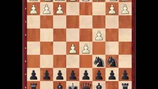 Шахматы. Ловушки в защите Алехина