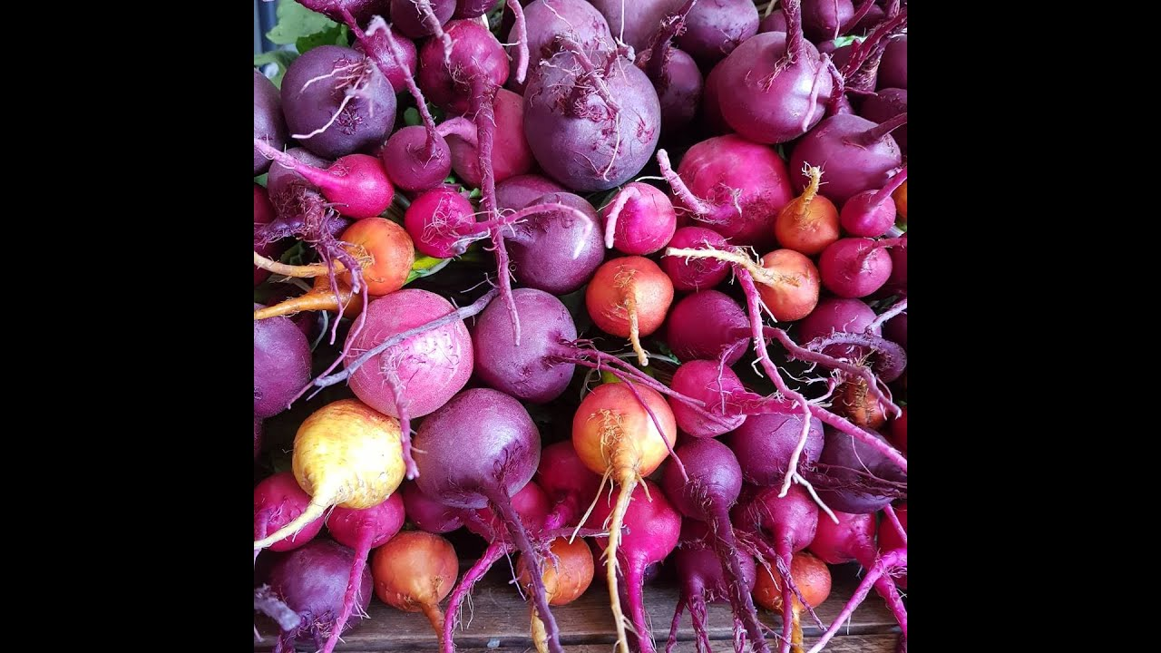 Beetroot - so much more than purple!