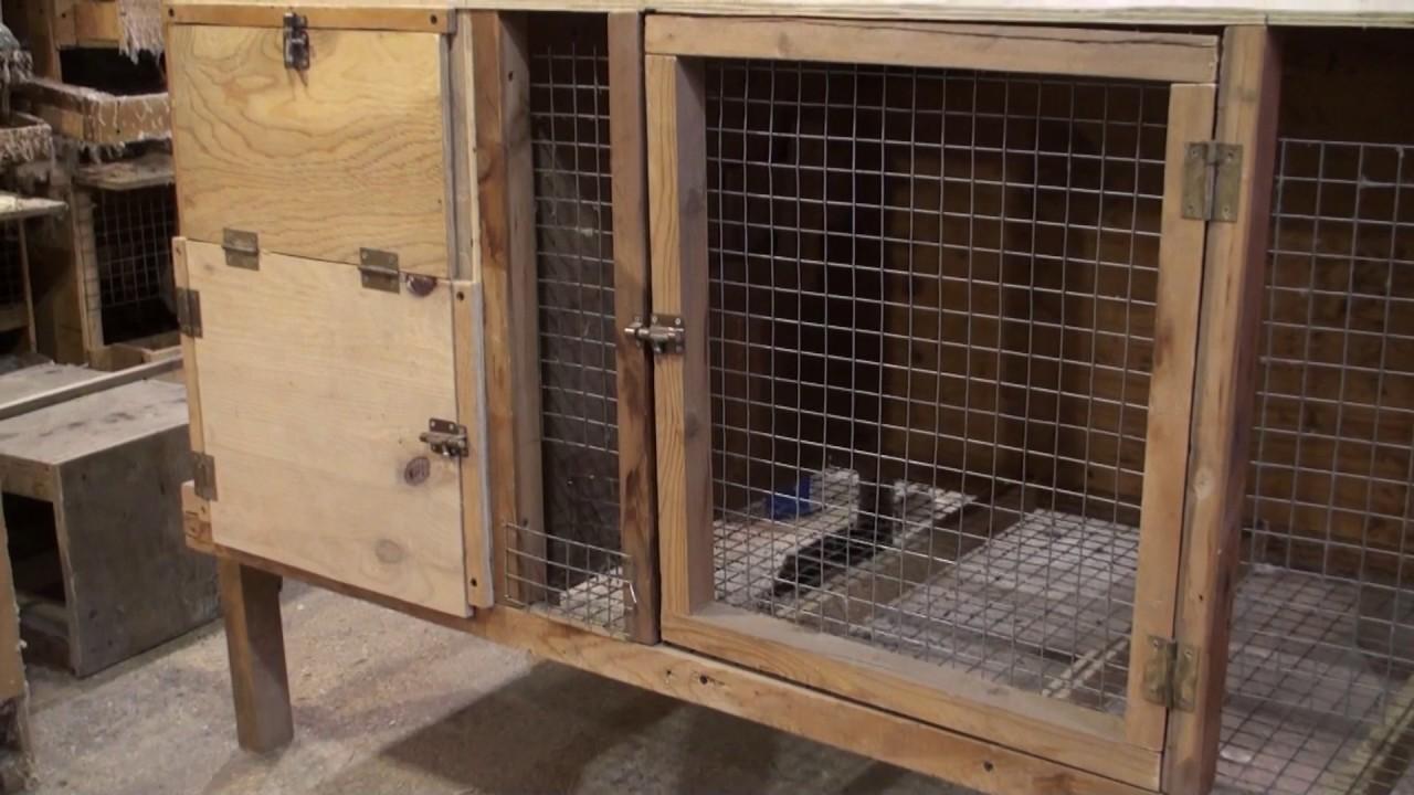 Клетки для кроликов с маточниками своими руками фото 749