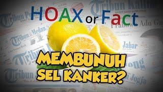 Hoax or Fact: Lemon Panas dapat Membunuh Sel Kanker?.